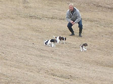 Hal Chaney training dogs