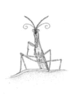 Mantis 4-01.png