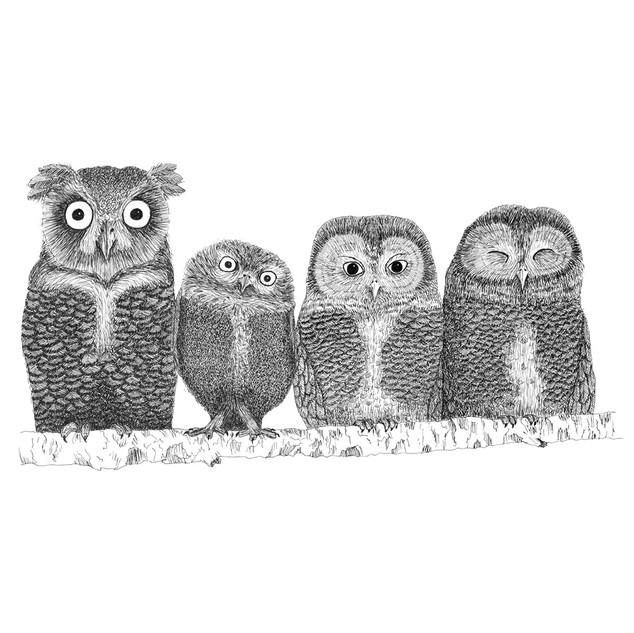 Four little owls