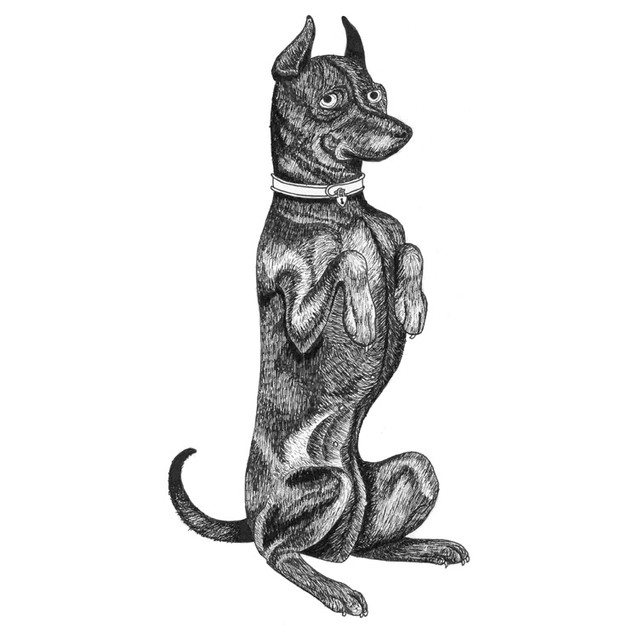 Dotty the dog