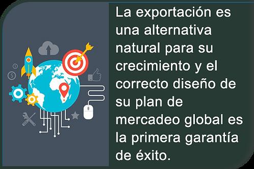 El Plan de Mercadeo Internacional
