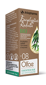 OLFAE-Eucalyptus-PS.png