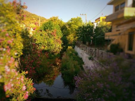 Wonderful Cretan taverns in the region of Heraklion: Giasemi tavern in Fodele