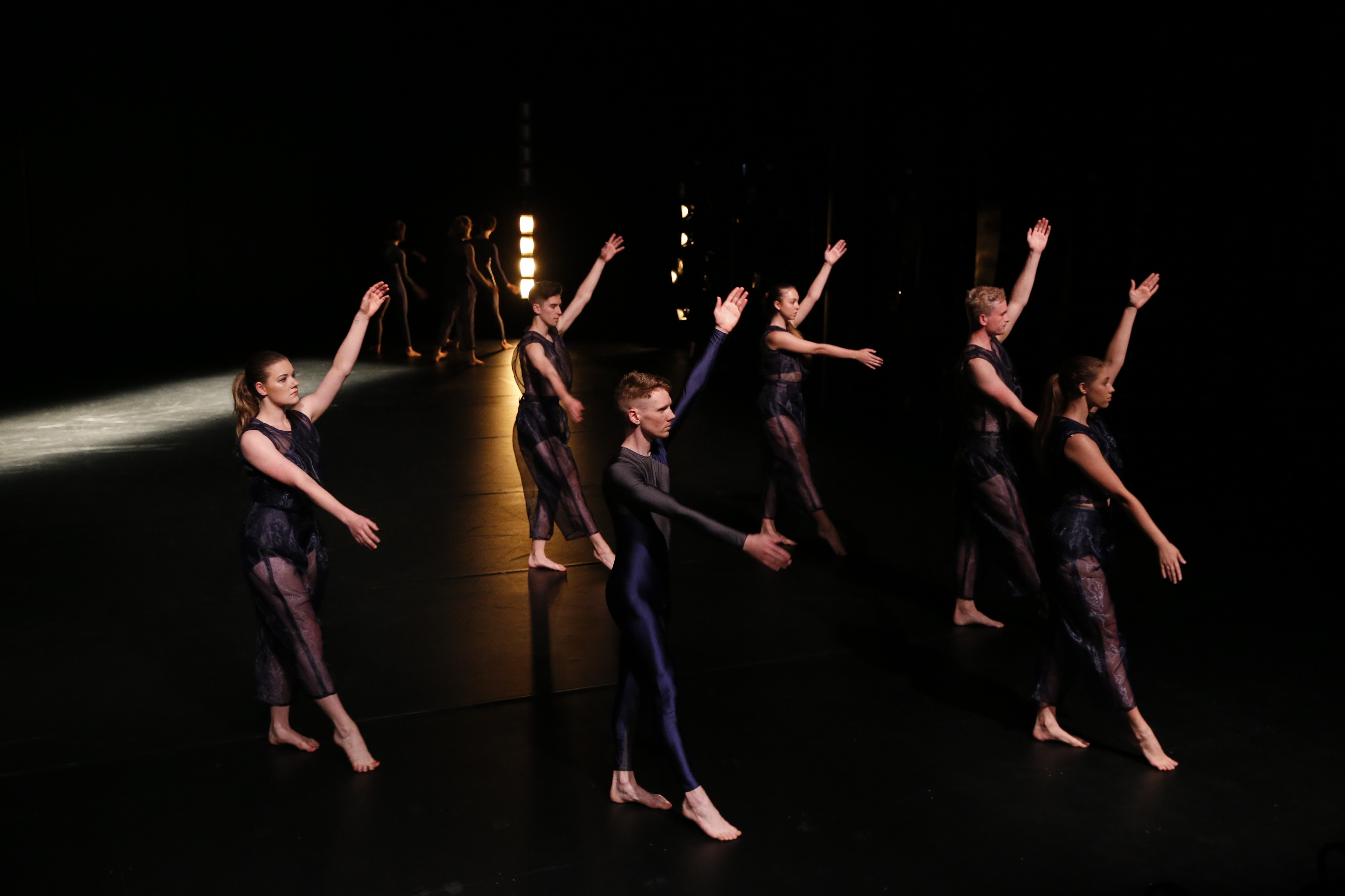VCA DANCE_7035
