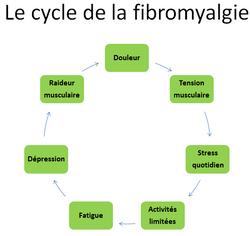 le cycle de la fibromyalgie
