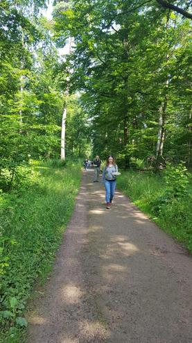 Naturcoaching - sich mit der Natur verbinden