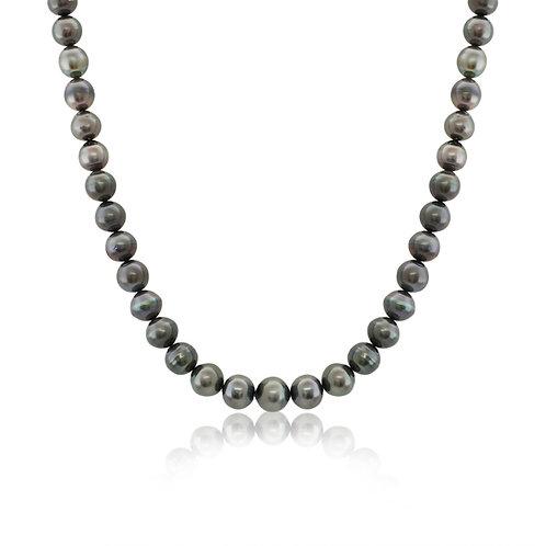 TB2C7S0310D Tahitian pearl