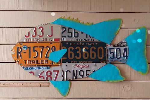 License Plate Grouper (2.5 Feet) #3