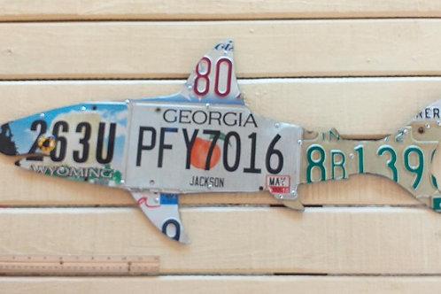 License Plate Shark #2
