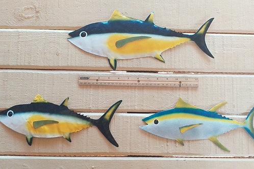 Tuna set of 3