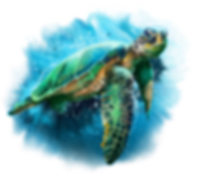 green_sea_turtle_by_kajenna-dbv06s3.png