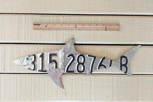 License Plate Shark