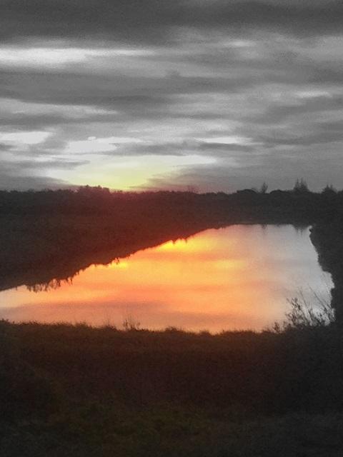 Claire…. au coucher du soleil
