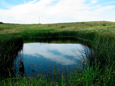 Waterline provides groundwater resource management critical to protecting drinking water and aquifers through a variety of methods