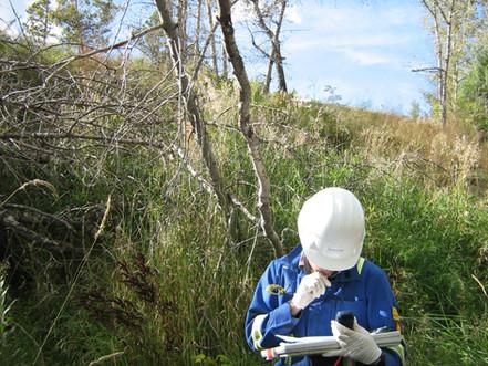 Waterline is Hiring: Senior Hydrogeologist/Environmental Engineer in BC