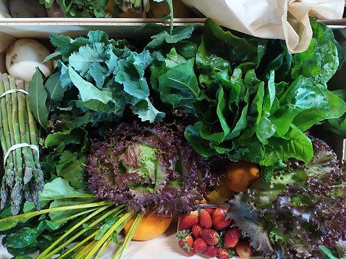 Cabaz de fruta e legumes biológicos variados (8kg) | encomenda para terça-feira