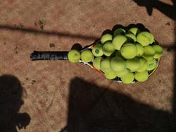 tennis_09_1