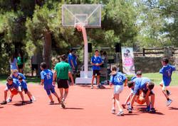 basket_006