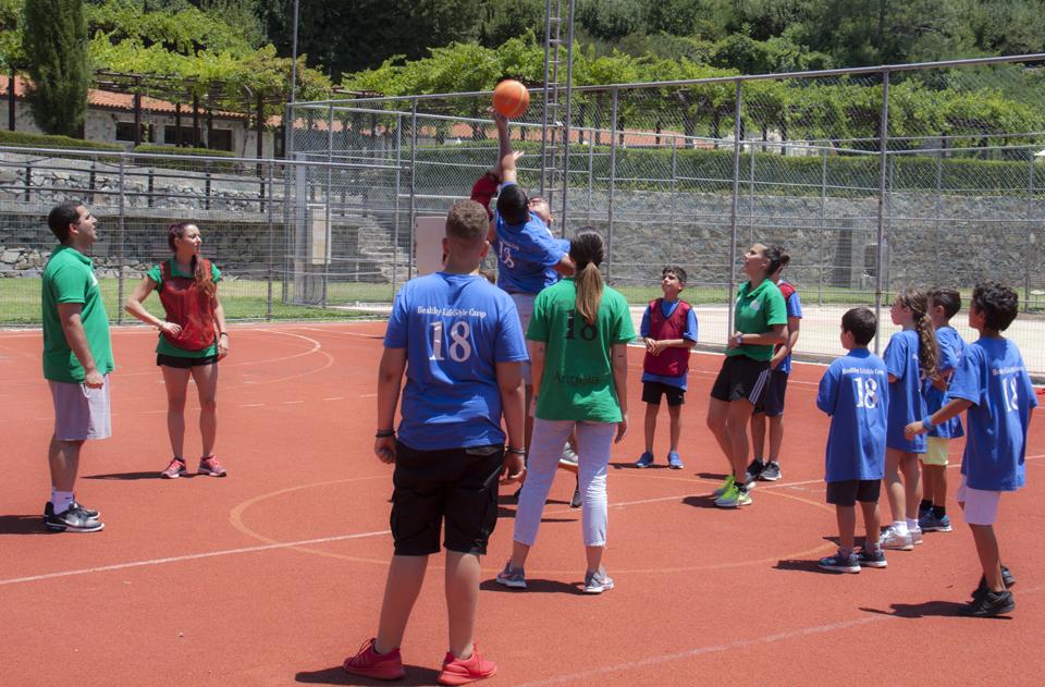 basket_005