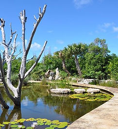 Leon Levy plant preserve.jpg