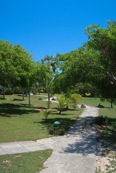 Pathway to the beach and guest house