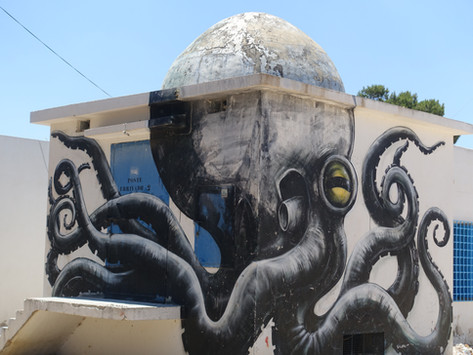 Djerba – mehr als Pauschaltourismus