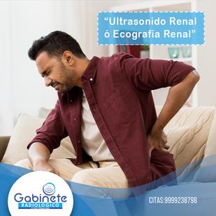 Ultrasonido Renal y  Vías Urinarias