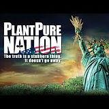 Plant Pure.jpeg