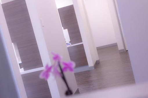 San Marcos Dental Studio Hallway 2