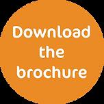 Download brochure flash.png