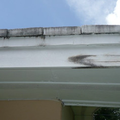 Fascia damage is common if not properly cauled and painted.