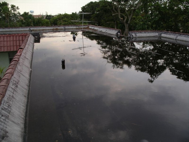Severe ponding water on roof.