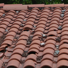 Broken tiles, this house was vandalized. The tile underlayment can not be exposed to the sun!