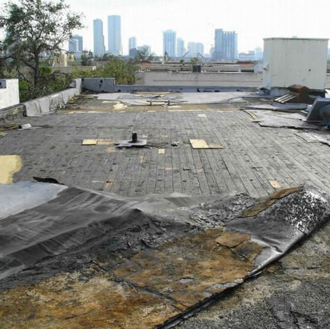 roof-emergency-7.jpg