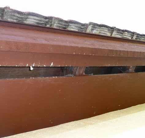 Broken soffit screen will allow rats and other critters into your attic.