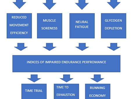 A critical evaluation of the physiological adaptions of concurrent resistance training in endurance.