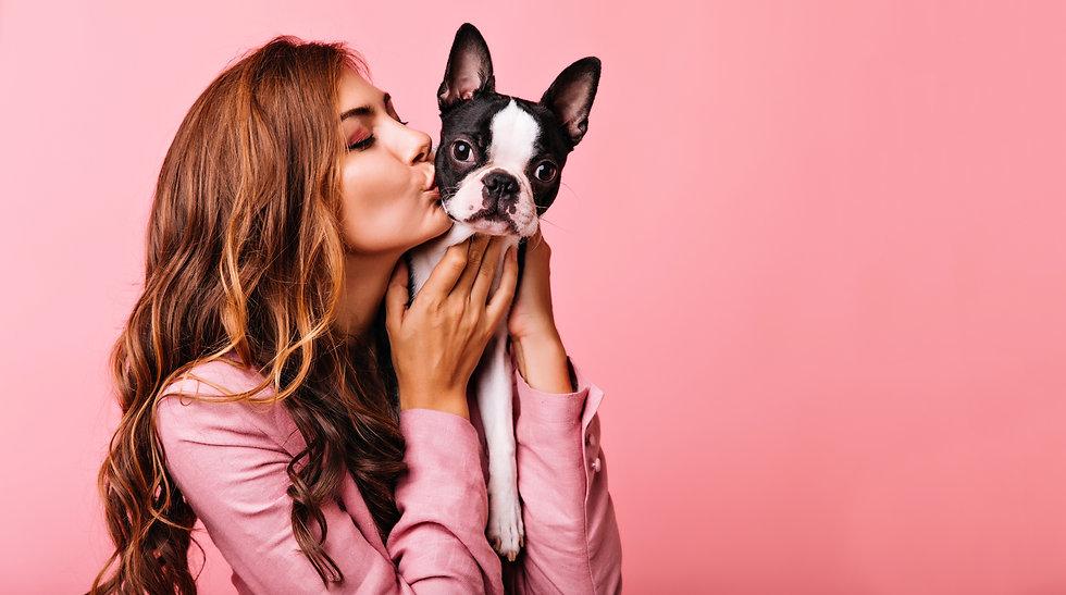 Lovely female model kissing funny bulldo
