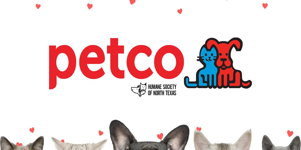 Petco Adoption Event at Presidio Junction