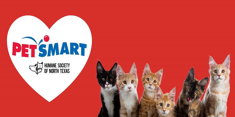 PetSmart Adoption Event at Lake Worth