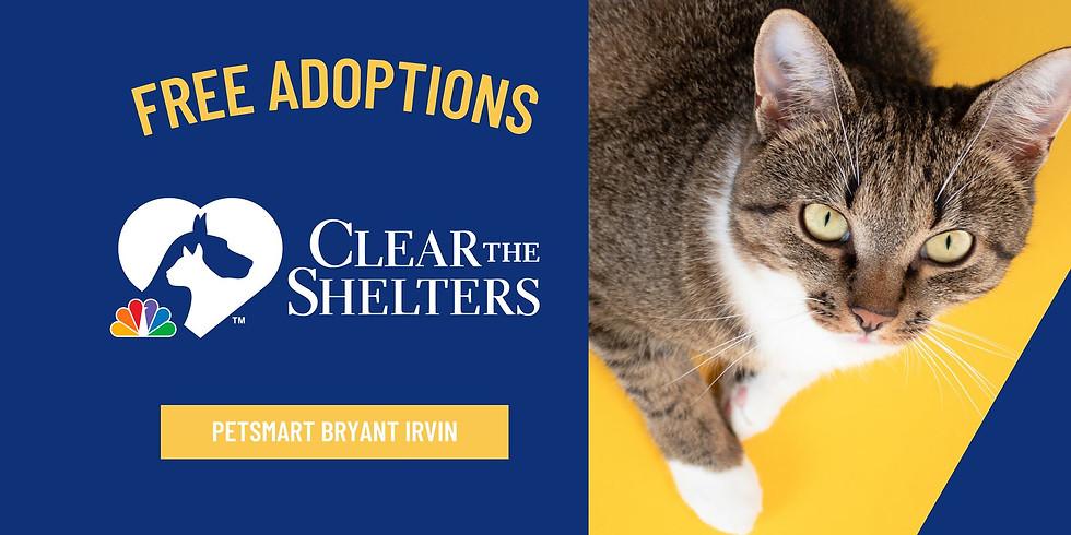PetSmart at Bryant Irvin FREE Adoption Event