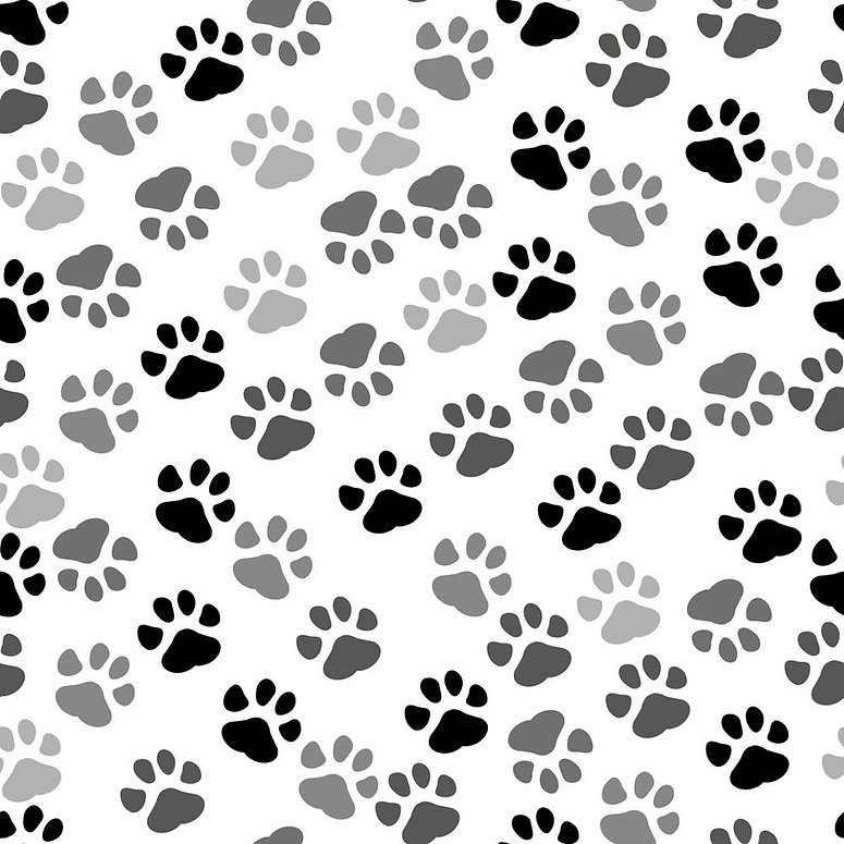seamless-background-pet-paw-print-and-bo