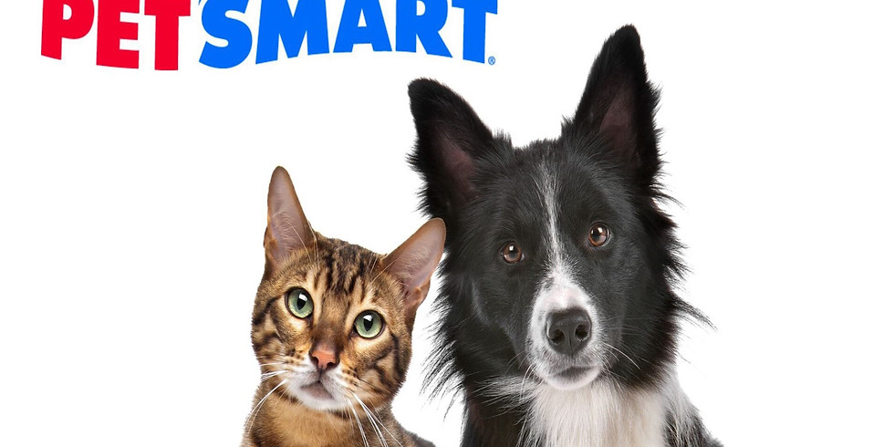 Adoption Event at PetSmart in Southlake