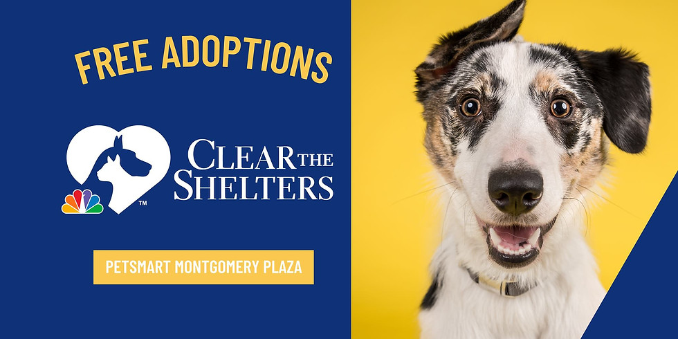 PetSmart Clear the Shelters Event at Montgomery Plaza