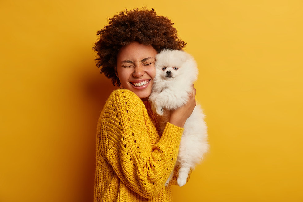 Pleased happy Afro girl gets lovely pupp