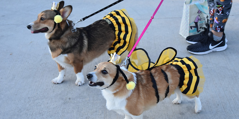 Trick-or-Trot