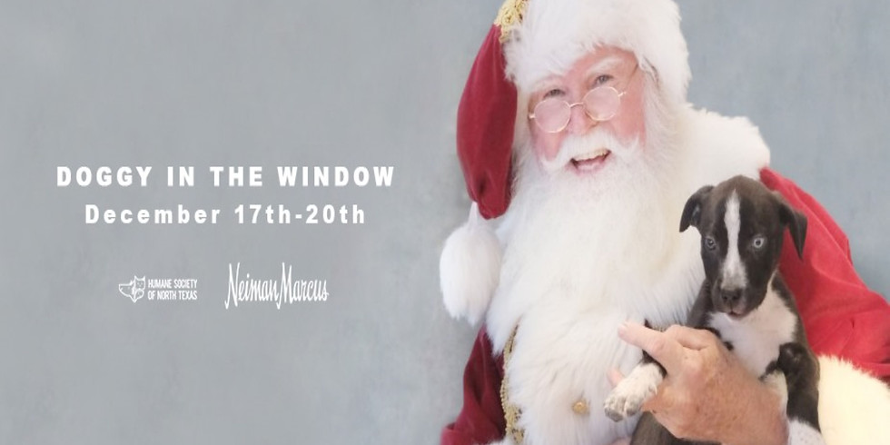 Doggy in the Window Holiday Adoption Event at Neiman Marcus