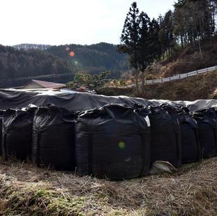 Могильники токсичных и радиоактивных отходов