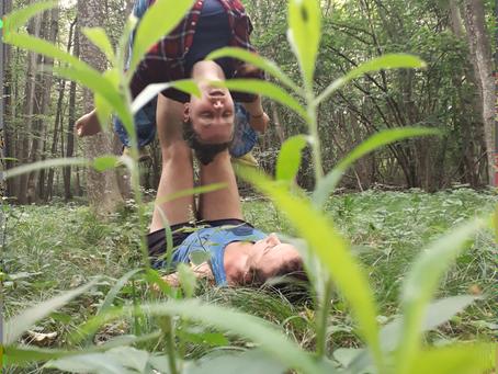 Der Wald – Ein Ort, der verbindet