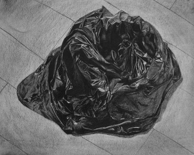 Charcoal on Paper Course: Drawing One Assignment: Planar Analysis (Homework)