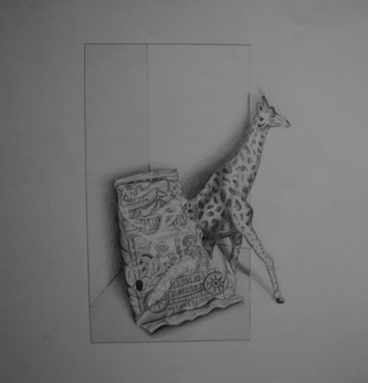Graphite on Paper Course: Drawing One Assignment: Tromp L'oeil (In-Class)
